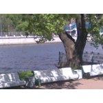 Центральный парк культуры и отдыха (ЦПКиО) имени С.М. Кирова, Санкт-Петербург фото