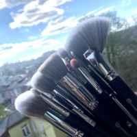 Набор кистей для макияжа BH cosmetics Pro фото