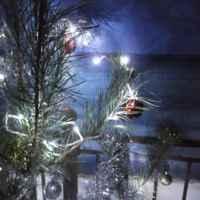 Электрогирлянда светодиодная BuyInCoins 10 м 100 LED фото