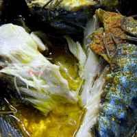 рыбка сочная и полезная