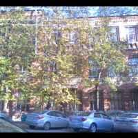 здание за деревьями