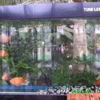 Экскурсия в ботанический сад, город Янцзы, Китай фото