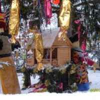 Яремче 3*, Украина фото