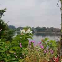 Таиланд. Река Квай фото