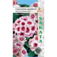 Семена глоксинии фирма Агрос АВАНТИ F1 Персиковая роза фото