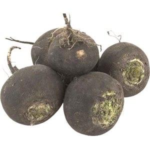 Овощи Редька фото