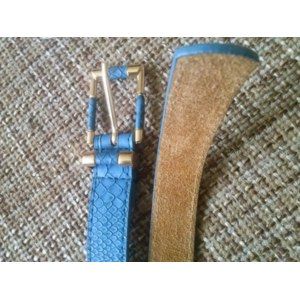 Ремень Aliexpress Hot sell high quality genuine leather snake type plating women waist belt,nice gift for women,free shipping )   фото