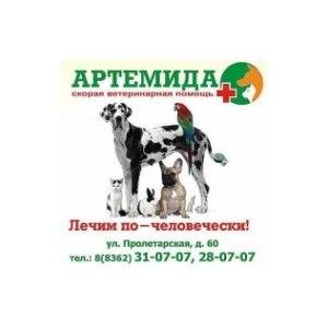 Ветеринарная клиника «Артемида», Йошкар-Ола фото