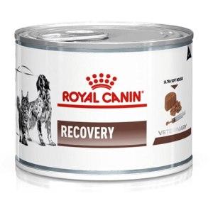 Royal canin Recovery фото