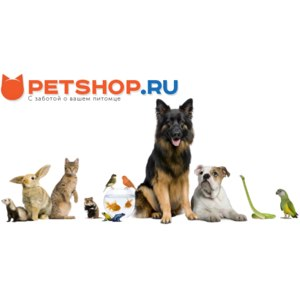 Интернет-зоомагазин Petshop.ru фото