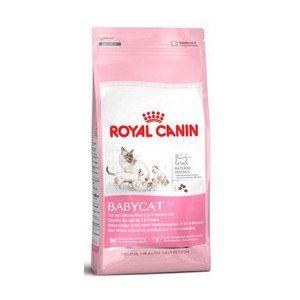 Корм для кошек Royal Canin Mother & Babycat фото