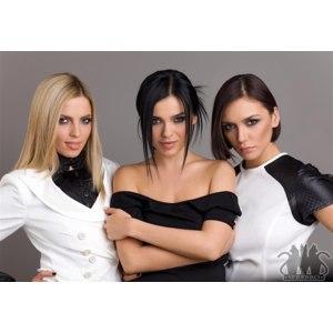 Группа Серебро фото