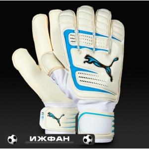 Перчатки вратарские Puma V6.11 фото