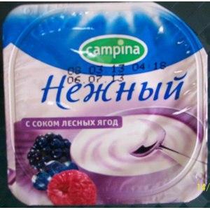Йогурт Campina Нежный с соком лесных ягод фото