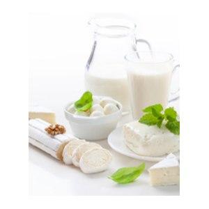 Молочные продукты Еда Кочевников Қурт фото
