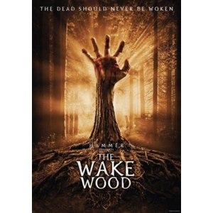 Пробуждающий лес / Wake Wood  (2011, фильм) фото