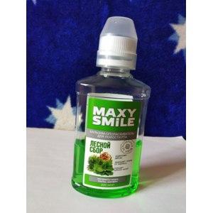 Ополаскиватель для полости рта ПФК Две линии Maxy smile лесной сбор фото