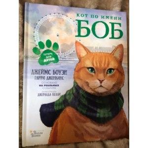 Кот по имени Боб. Джеймс Боуэн фото