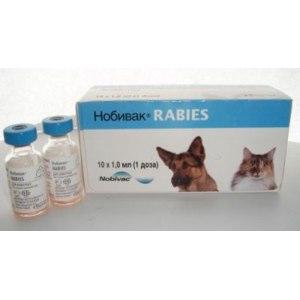Вакцина от бешенства для собак и кошек Nobivac Rabies (Голландия)  фото