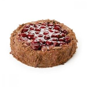 Торт Север-Метрополь Шоколадно-вишнёвый фото