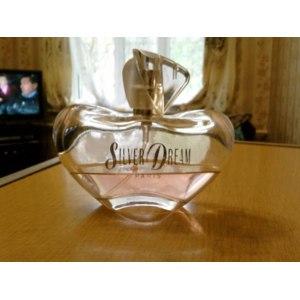 Silver Dream  фото