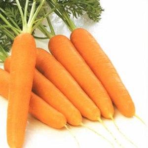 Овощи   Морковь фото