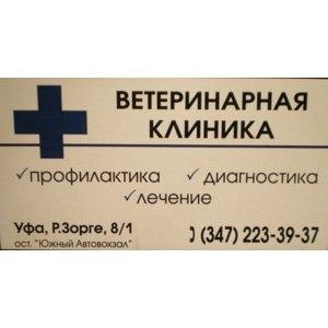 Ветеринарная клиника ИП Шмидт Э.В., Уфа фото