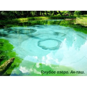 Горный Алтай. Голубое озеро. фото