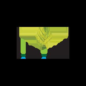 Сайт Онлайн - лаборатории Selfbeauty.ru фото