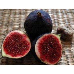 Фрукты   Инжир (фига, фиговое дерево, смирнская ягода, винная ягода, смоква или смоковица) фото