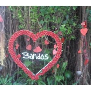 Bandos Island Resort Maldives 4*, Мальдивы, Северный Мале фото