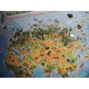 Животный и растительный мир Земли. Детская карта. Маленький Гений-Пресс, 2014 г. 4607054090115 фото
