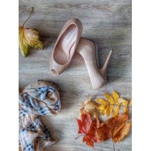 Туфли женские T.Taccardi YD2015-3A фото