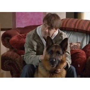 Лорд. Пёс-полицейский фото