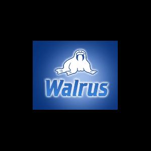 Сеть обувных магазинов Walrus, Ростов-на-Дону фото