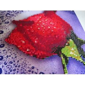Алмазная вышивка Color-Kit фото