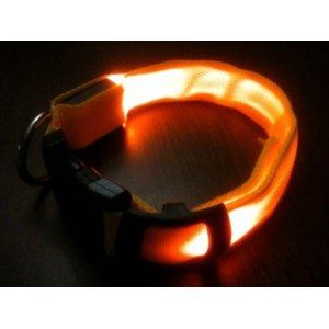 Ошейник Aliexpress Colorful LED Nylon Pet Dog Collar Night Safety LED Light-up Flashing Glow in the Dark Free Shipping FMHM466#S5 фото