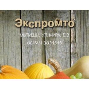 Экспромто, Мытищи фото