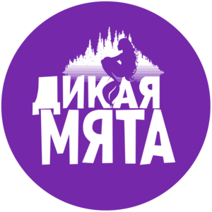 Фестиваль Дикая Мята, Бунырёво, Тульская область фото