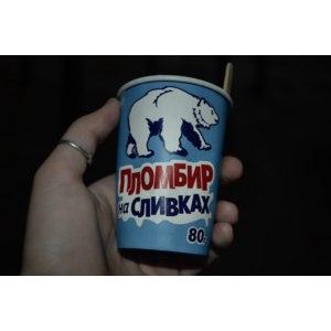 Мороженое Славица Пломбир на сливках фото