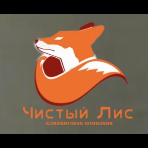 """Клининговая компания """"Чистый лис"""", Москва фото"""
