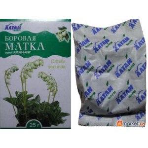 Народное средство   Ортилия однобокая, Боровая матка / Orthilia secunda фото