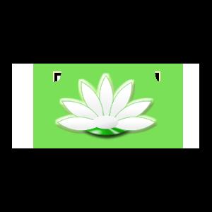 lotos-herbals.ru Интернет-магазин индийской косметики фото