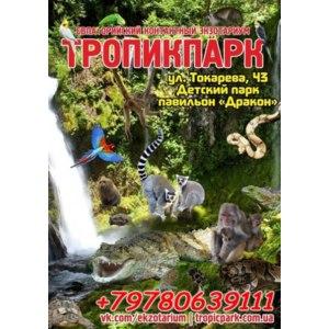 Тропик-парк, Евпатория, Крым фото