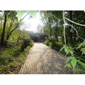 Царские сады, Москва фото