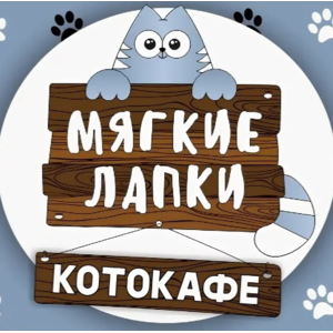 Котокафе Мягкие лапки, Челябинск фото