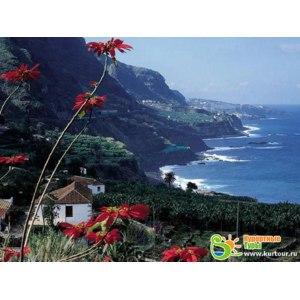 Испания, остров Тенерифе фото