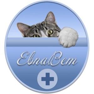 """Ветеринарная клиника """"Евпавет"""", Евпатория фото"""