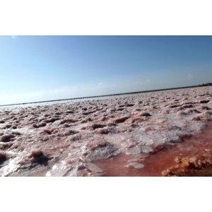 Геническое розовое соленое  озеро (с.Приозерное, Арабатская стрелка., Херсонская обл.,Украина) фото