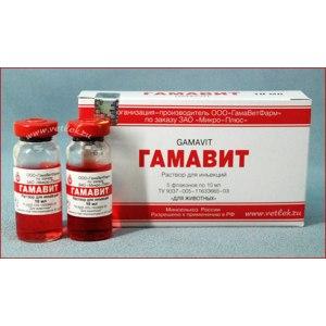 Витамины   Гамавит фото